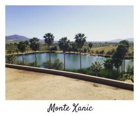 Monte Xanic-Ruta del Vino-Valle de Guadalupe-Baja California